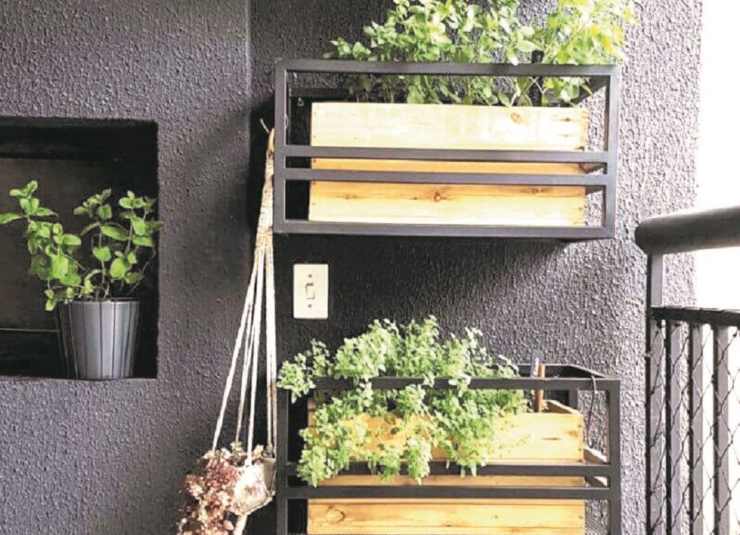 Hortinha em apartamento: cor, frescor e mais vida ao ambiente